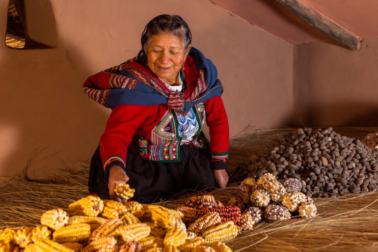 Cléofécélia, International Award Terre de Femmes 2021 laureate of the Yves Rocher Foundation, lists, preserves and disseminates knowledge about seeds and local seeds to save a whole section of the plant and cultural heritage of the Andes.