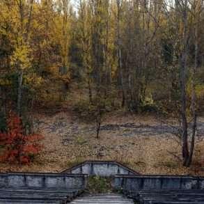 Forêt Europe de l'est Tchernobyl Guillaume Herbaut mission photographique
