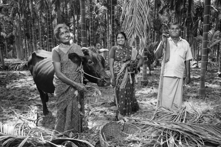 EmanueleScorcelletti, committed to reforestation in India