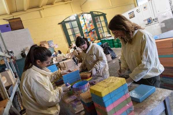 Debora Rizzetto apiculture