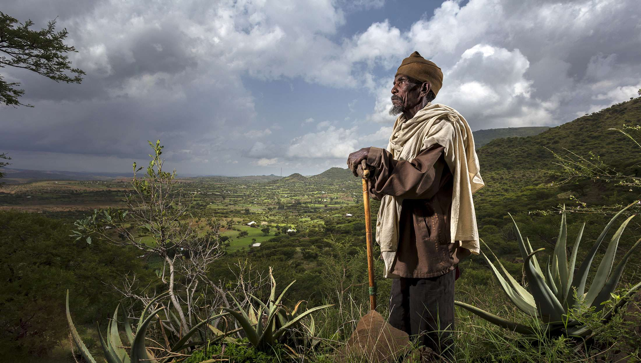 Brent Stirton, Committed to reforestation in Ethiopia