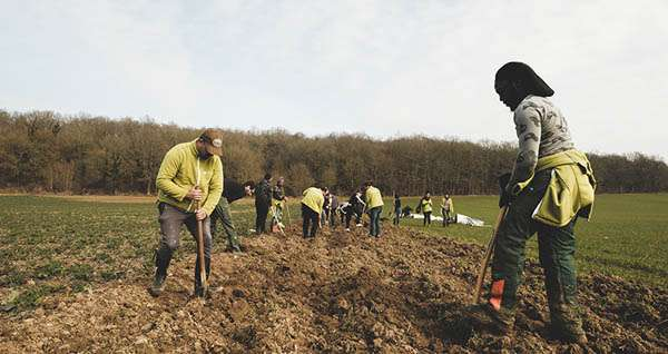 Plantation d'arbres en Seine et Marne Fondation Yves Rocher