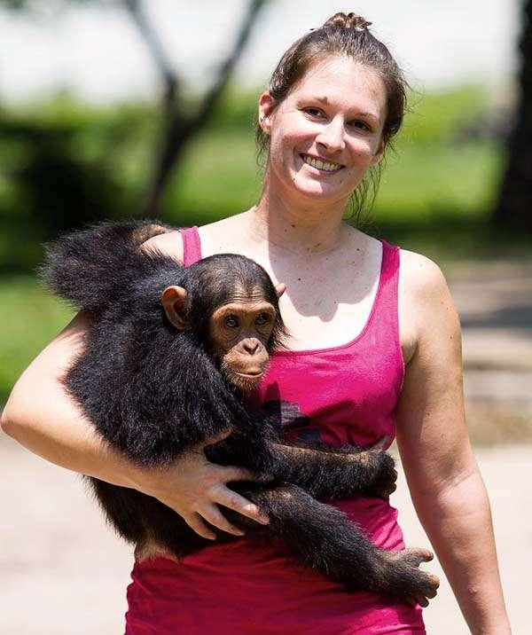 amandine renaud primates p-wac