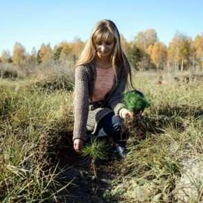Parcs nationaux ukrainiens replantations d'arbres soutenues par la Fondation Yves Rocher. Reportage Guillaume Herbaut