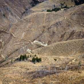 400 hectares de déforestation en Roumanie, coupes d'arbres illégales un reportage de Guillaume Herbaut