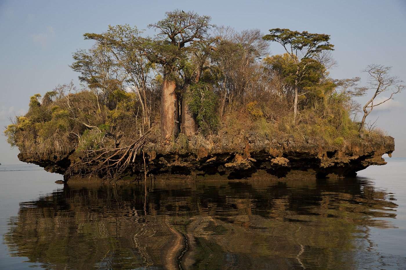 Soutien photographe, Pascal Maitre, un monde de baobabs Madagascar