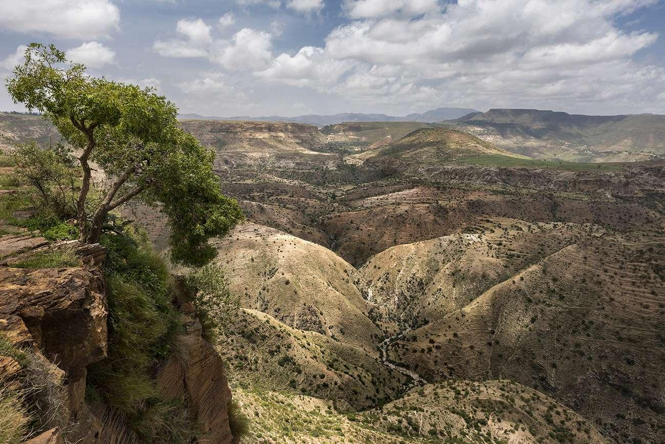 Brent Stirton : 90% couverture forestière a disparu en Ethiopie.