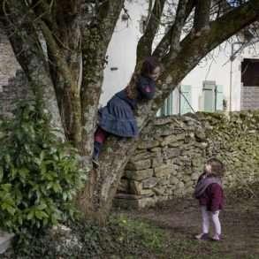 Phil Hatcher-Moore : des enfants jouent dans les arbres, expérience de nature