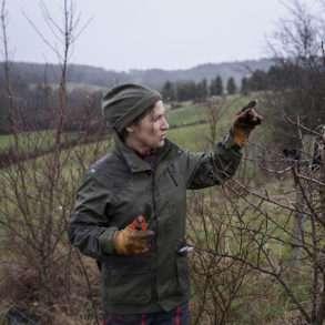 Phil Hatcher-Moore : Sylvie Monier sensibilise ses pairs agriculteurs aux avantages de l'agroforesterie.