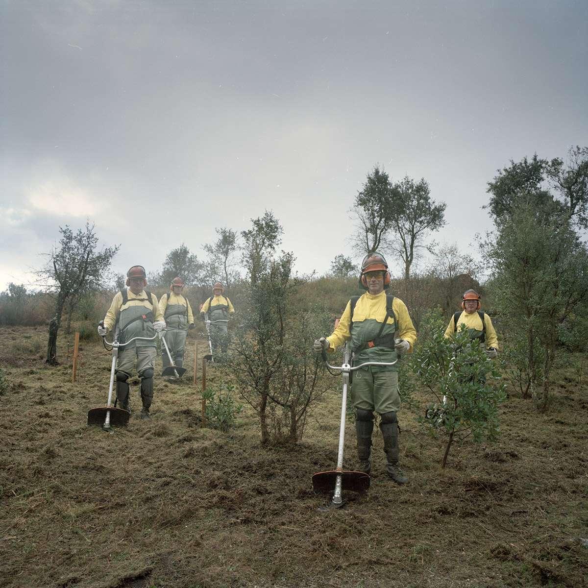 Lutte contre les feux de forêts au Portugal une mission photographique Juan Manuel Castro Prieto