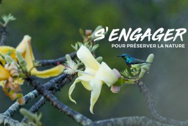 Plantes & Biodibersité Fondation Yves Rocher