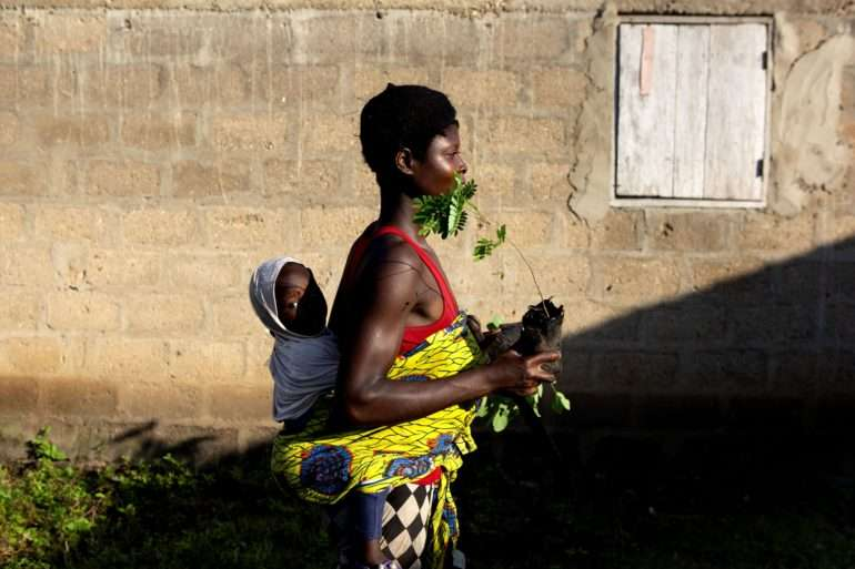 Au Togo, les familles plantent des arbres fertilitaires grâce à la Fondation Yves Rocher