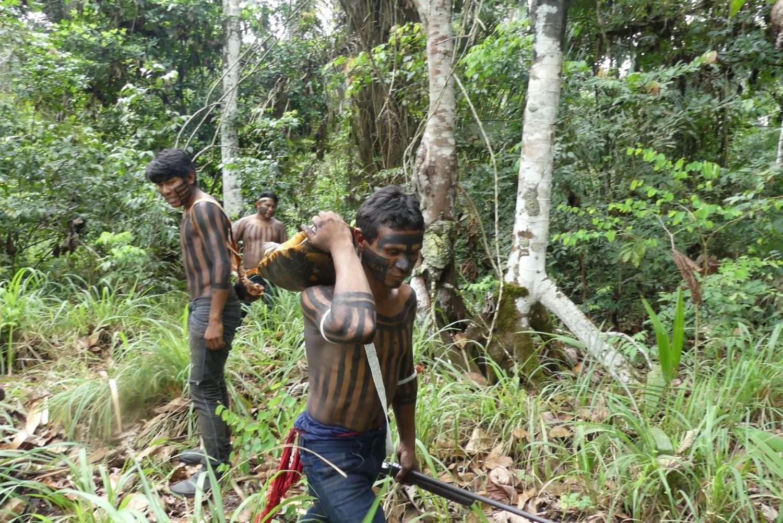 Amazonie en danger la communauté Xikrin se bat contre la déforestation