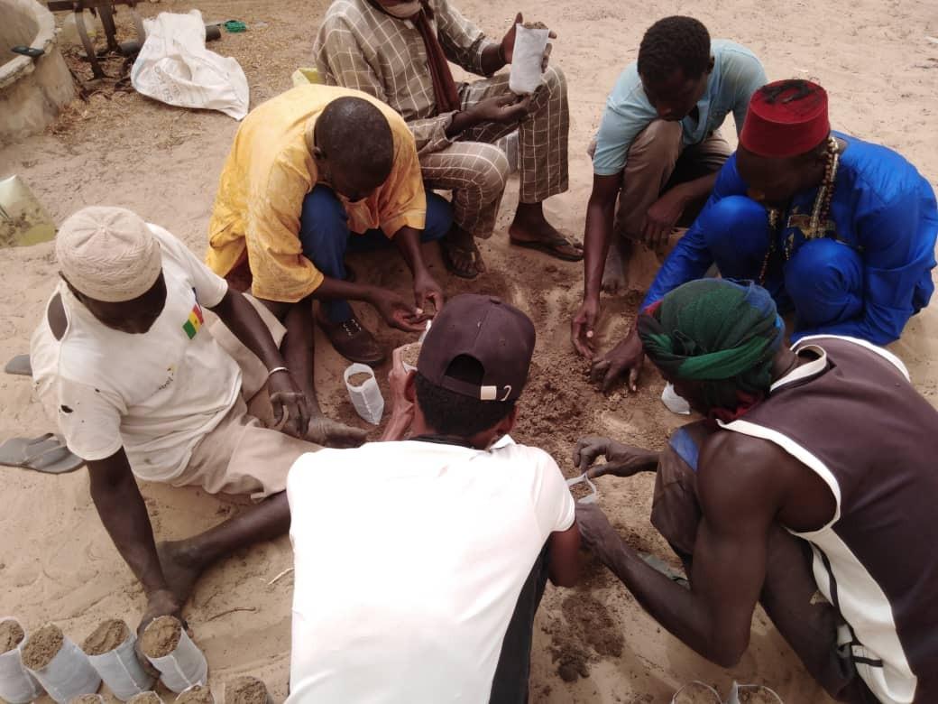 AVF Sénégal