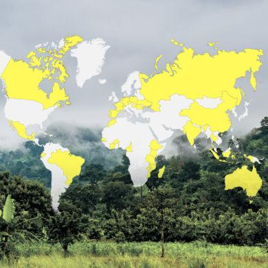 100-millions-d'arbres-plantés-carte-des-pays-d'action