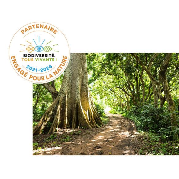 La Fondation Yves Rocher est Partenaire Engagé pour la Nature