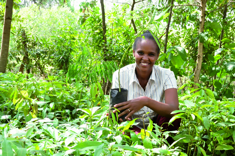 Ruhama Getahun, lauréate terre de femmes engagée pour la reforestation en Ethiopie